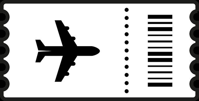 cestovní tiket