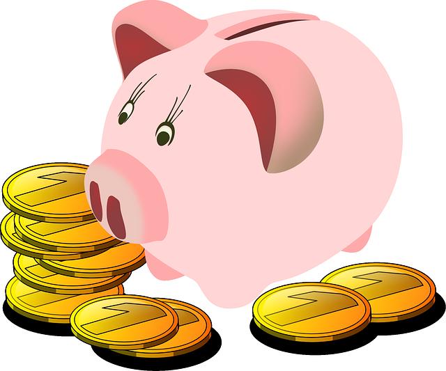 Hypotéka bez dokládání příjmů?