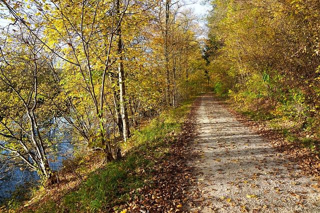 cesta u řeky