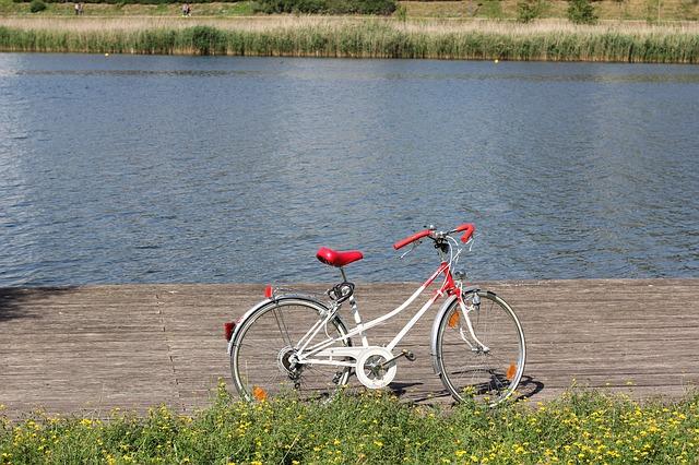 kolo u řeky